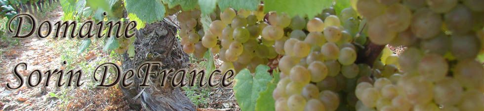 Domaine Sorin DeFrance